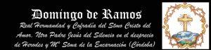 Domingo-de-Ramos18