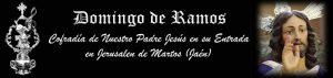 Domingo-ramos-2019